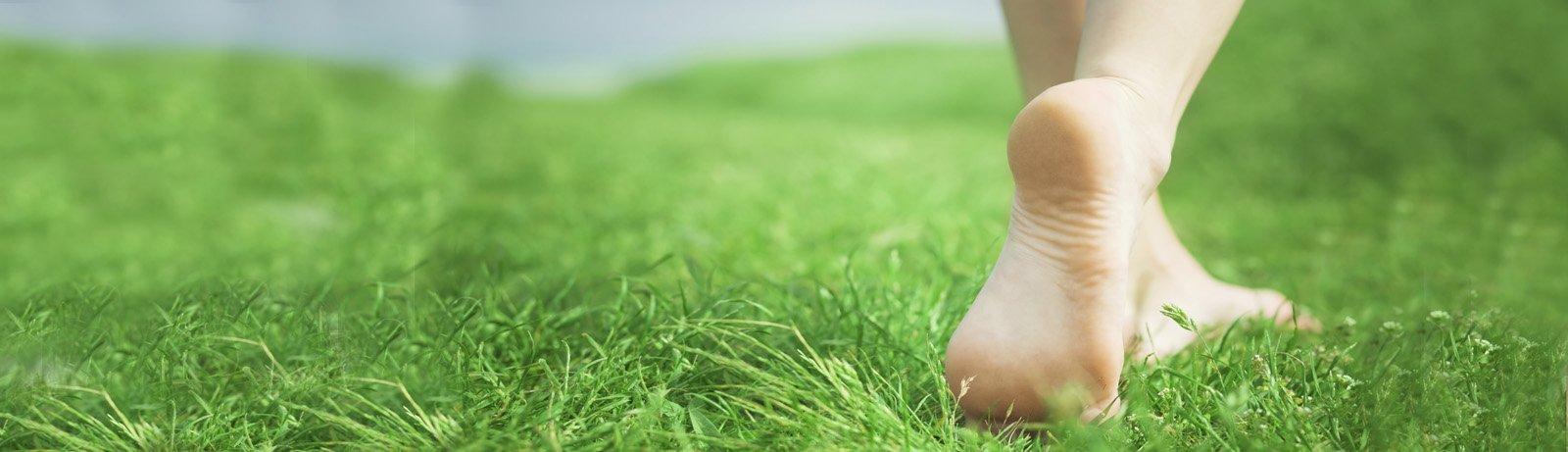 slider_grass
